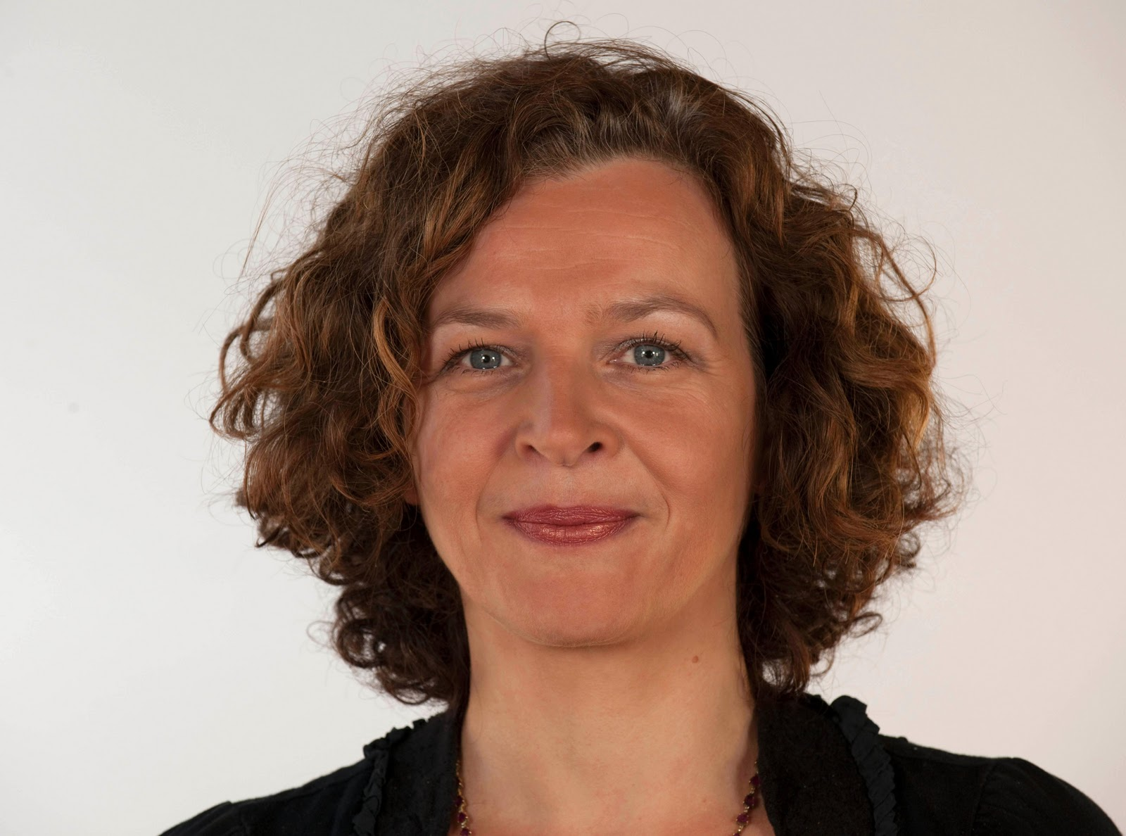 Edith Schippers Dutch dentists to increase prices Minister Edith