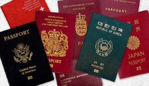 passport colours world