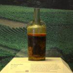 Römerwein von Speyer is world's oldest bottle of wine and 1693 years old